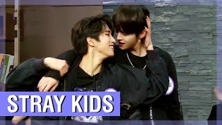 STRAY KIDS FUNNY MOMENTS