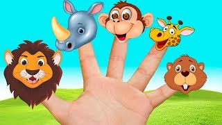 Finger Family Song, Animals - Nursery Rhymes, Kids Song