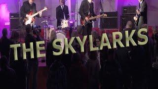 The Skylarks - Buckle Shoe Stomp / She Loves You - Nastolan Rautalankafestarit 2015
