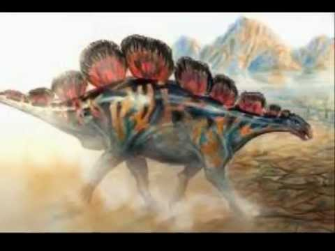 Top 5 Largest Stegosaurs
