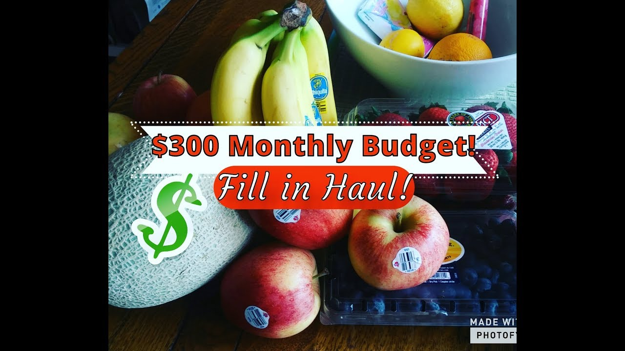 march fill in grocery haul 300 monthly budget family of 4 youtube