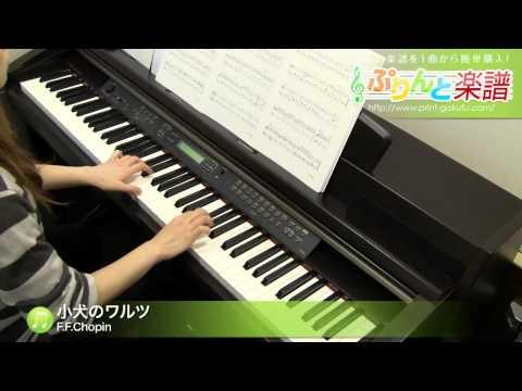 小犬のワルツ F.F.Chopin