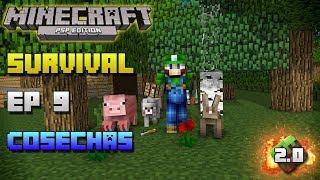 Minecraft PSP | Survival | Episodio 9 | Cosechas | Loquendo | HD | luigi2498