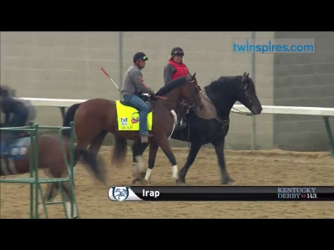 Kentucky Derby and Oaks horses train