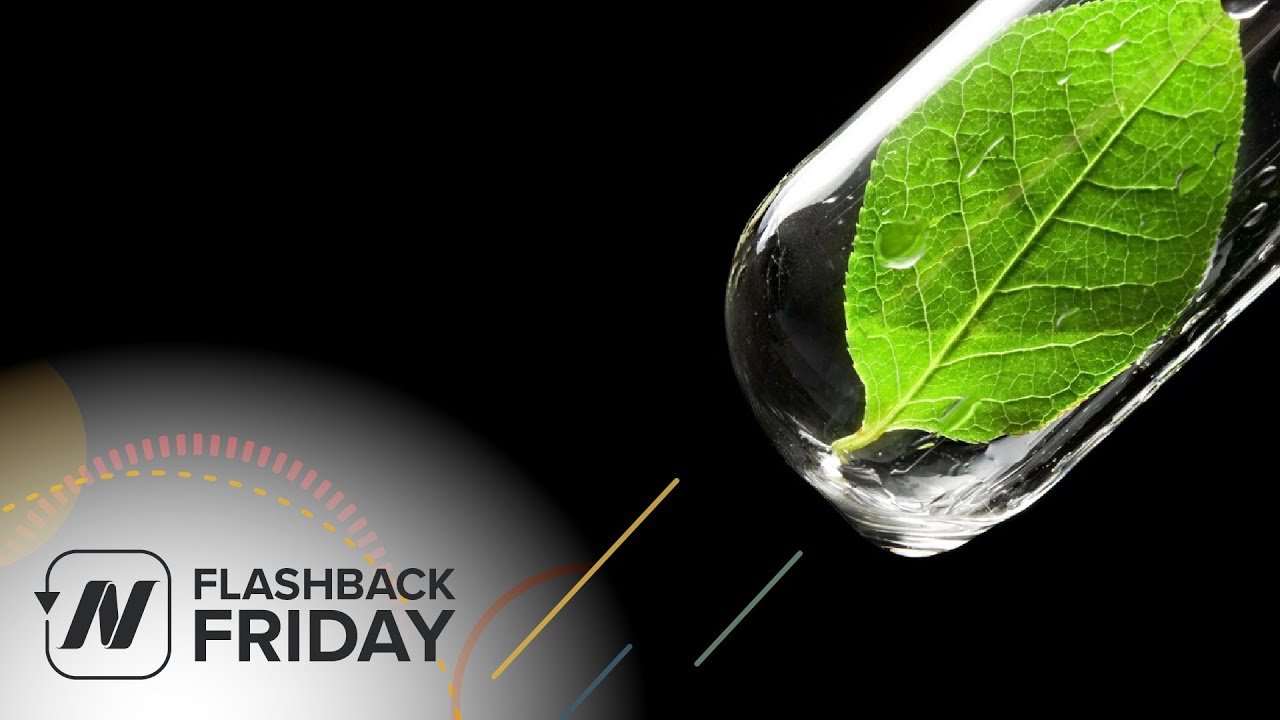 Flashback Friday: Green Smoothies - What Does the Science Say?