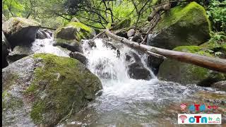 (OTN매거진)식장산 계곡 작은폭포(7) 자연의 요새지…
