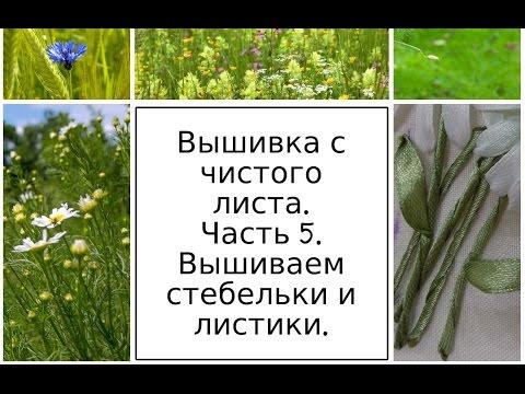 МК Вышиваем листья у разных видов ромашек. Часть 1. Разживалова Наталья