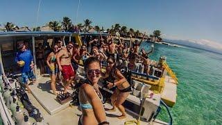 Cayos Cochinos Trips With Utila Dive Centre