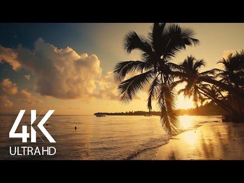 8 HOURS Calm Ocean Waves Sounds - Tropical Beach Sunrise 4K Video