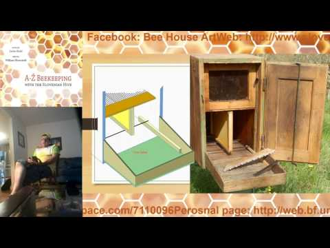 Slovenian apiculture, bees and hives history to present day and World Bee Day Initiative