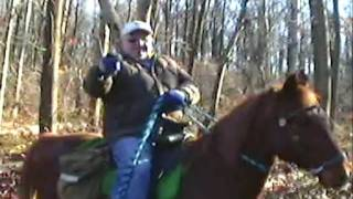Moron on a Horse ( an example of Pennsylvania