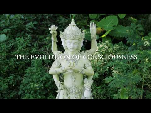 What is Consciousness? With Gary Cook, Bruce Damer PhD, Terri O'Fallon, and Amrit Desai