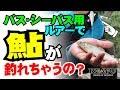 【REAYU】 ルアーで鮎を釣るためのチューニング!