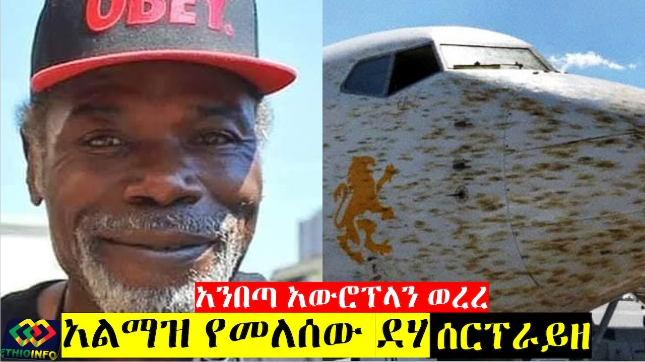 Grasshopper Swarms on Ethiopian Airlines 737 aircraft