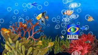 Remake Cierre de transmisiones Caracol TV 2002-2006