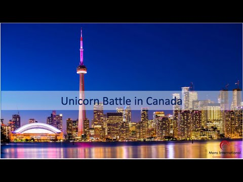 Unicorn Battle in