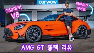 5억짜리 AMG GT 블랙 시리즈 리뷰
