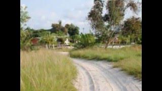 Voyage Au Coeur des Trésors Naturels de la Pointe-Denis(Gabon)