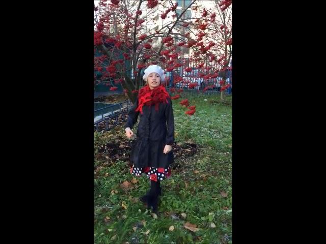 Изображение предпросмотра прочтения – АлисияЮргенсон читает произведение «Красною кистью рябина зажглась» М.И.Цветаевой
