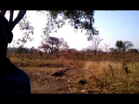 Visiting tookles (huts) in Kagwada, South Sudan