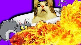 ЧТО КОТЫ УСТРОИЛИ В ВАННОЙ!! |МИЛАШКИ ДОИГРАЛИСЬ | приколы коты | смешные коты