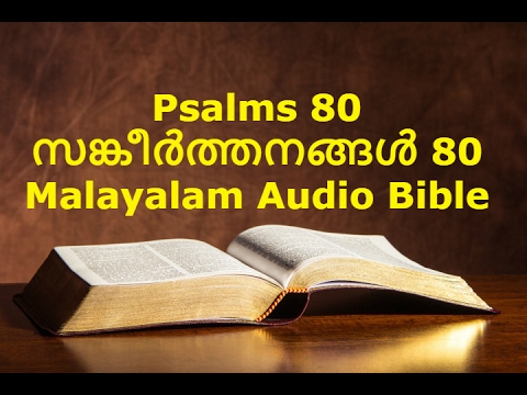 Daily Audio Psalms
