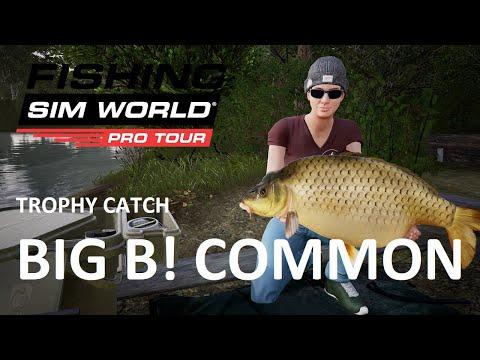 Fishing Sim World Trophy Catch     Big B! Common from Gigantica  
