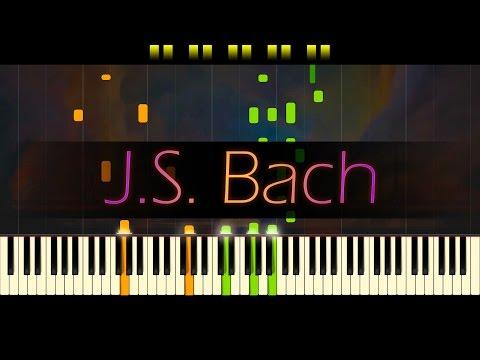 Jesu, Joy of Man's Desiring // J.S. BACH