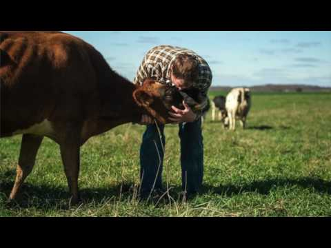 CAS Final Video Agri-Uncultured Media by Polly Prout