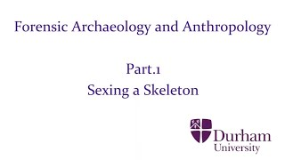 Forensic Archaeology and Anthropology - Part.1: Sexing a Skeleton (Final Edit)