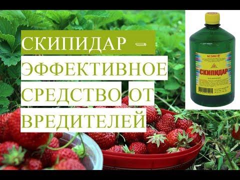 Лечение псориаза содой