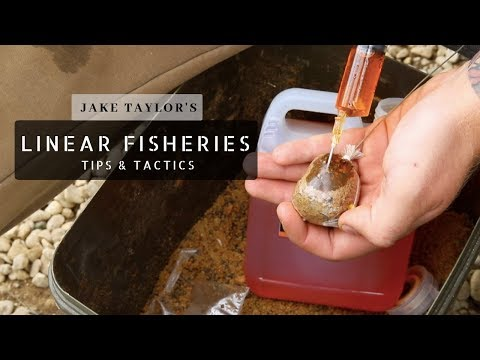 Carp Fishing TIPS & TACTICS - Jake Taylors Guide To Catching At Linear Fisheries