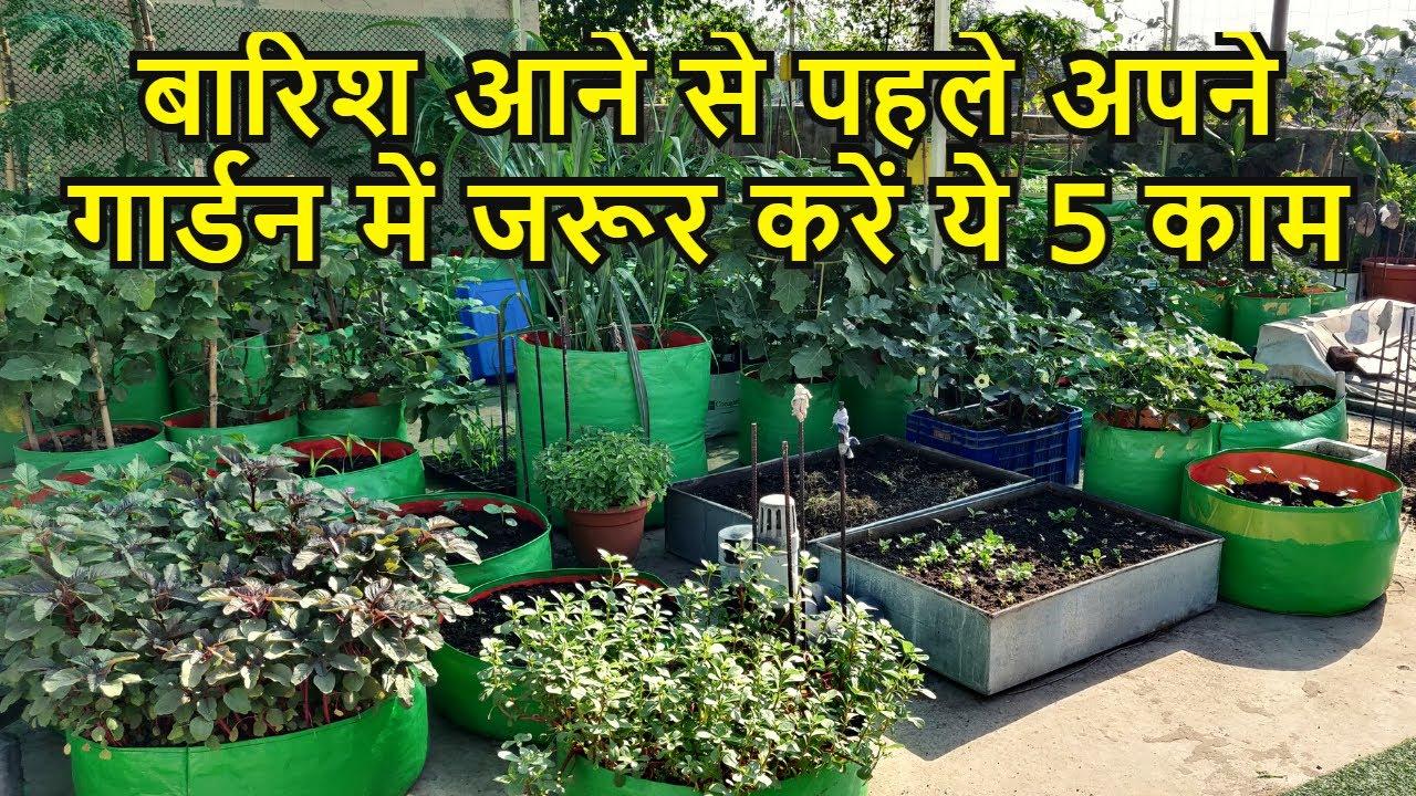 बारिश आने से पहले अपने गार्डन में जरूर करें ये 5 काम | Must Do these works before Rainy season Hindi