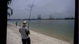 Fishing in Singapore 钓鱼 13
