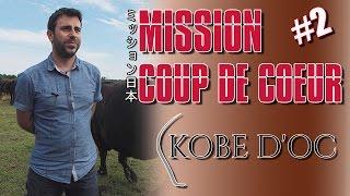 Mission Coup de coeur #2 - Kobe d'Oc