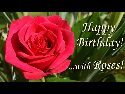 Happy Birthday Song with Roses - beautiful flowers pictures wishing Happy Birthday To You !