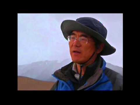 6610CC CHINA-TIBETAN ANTELOPE CALVING