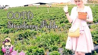 Strawberry Fields OOTD - Outfit Of The Day - Violet LeBeaux
