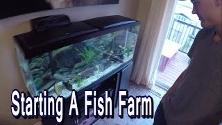 Starting A Fish Farm (Lethbridge, AB)