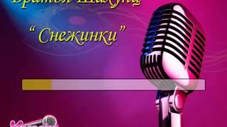 """Братья Шахунц """"Снежинки"""" караоке"""