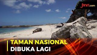 PSBB Transisi, 29 Taman Nasional Dibuka Lagi - JPNN.com