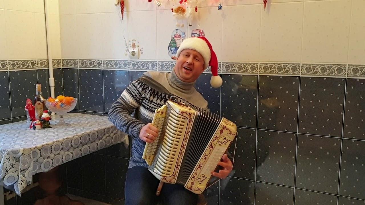 Паша гармонист - Новогодняя авторская песня(С Новым годом)