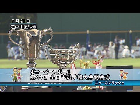 第44回 ポニーベースボール 日本選手権大会