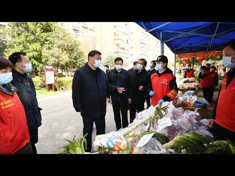 Xi Jinping visits