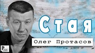 Download Олег Протасов - Стая (Альбом 2018) Mp3 and Videos