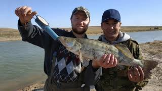 #рыбалка#шолак#щука#судак#Рыбалка Астана 2019.