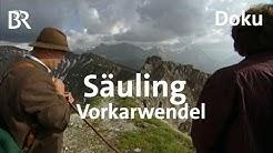 Bayerische Berge: Säuling und Vorkarwendel | Bergauf-Bergab | Doku | Alpen