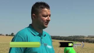 Агрофорум: Иновативни технологии при зърнокомбайните – доколко са важни за успешната жътва