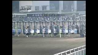 2013/06/09 高知競馬9R ひめキュンファン協賛 岡本真依生誕記念特別 優...