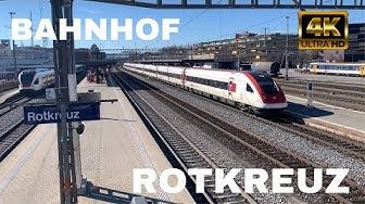 Züge beim Bahnhof Rotkreuz/Trains at Rotkreuz station (2020)